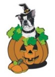 Boston Terrier Fall & Halloween Gifts