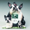 Boston Terrier Dog Lover Picture Frames