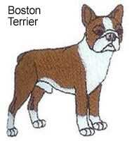 Boston Terrier Full Body