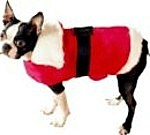 Boston Terrier Clothes - holiday dog outfits and christmas dog outfits