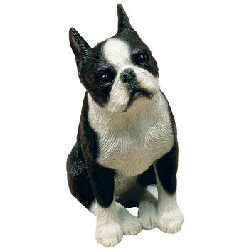 Here I Am Sandicast Boston Terrier Figurine