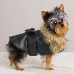 Boston Terrier Clothes - dog coats and jackets