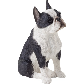 Sandicast Boston Terrier Looking Up Figurine