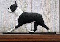Boston Terrier Dog In Gait Topper