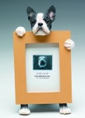 Boston Terrier Friend Picture Frame