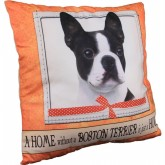 Boston Terrier Home Pillow