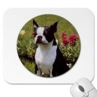 Boston Terrier in the Garden Mousepad