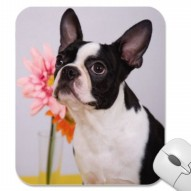 Boston Terrier with Pink Flower Mousepad