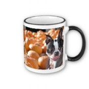 Boston in Pumpkin Patch Mug