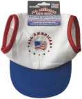 Lighted American Flag Dog Cap