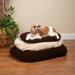 Slumber Pet Ortho Foam Dog Bed