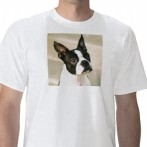 The Boston Look T Shirt